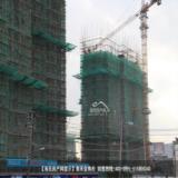 2015年11月24日泰禾金尊府工程进度